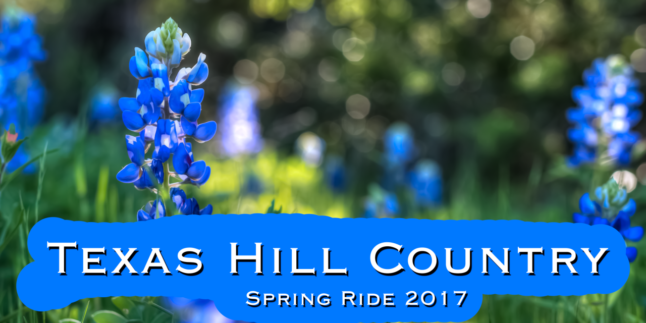 Texas Hill Country Wildflower Tour 2017