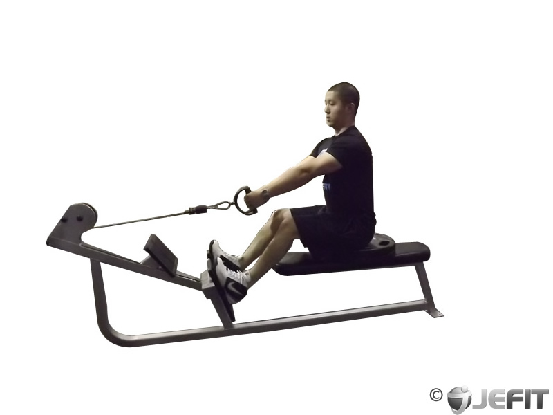Cable Elevated Rows Exercise Database Jefit Best