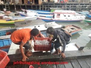 Tampak Tangkapan Ikan Nelayan di Ds Talisayan