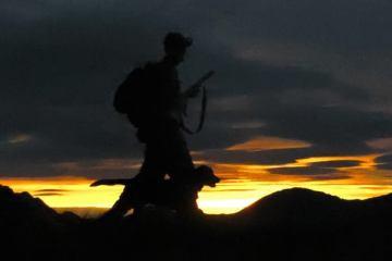 En story om rypejeger Jo Vaagan-Lidenskap for jakt og film