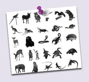 pinceles de animales para photoshop