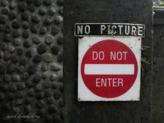 NO PICTURE :-|
