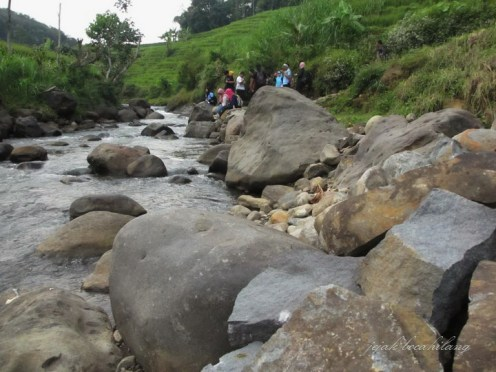sungai jernih di samping sawah