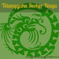DONGENG ANAK: Tetanggaku Seekor Naga