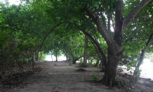 pulau kiluan lampung 8
