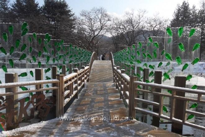 nami island south korea 11