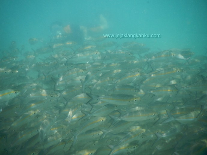 wisata gili lombok