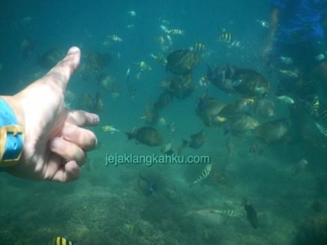 gili nanggu lombok 8