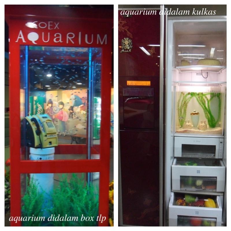 coex aquarium seoul 2