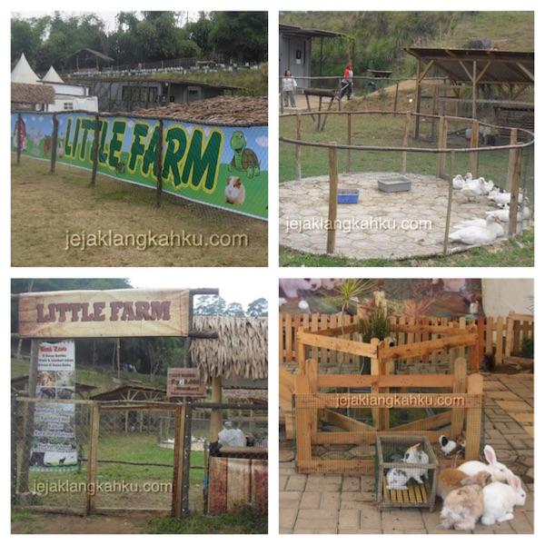 little farm dusun bambu lembang 1