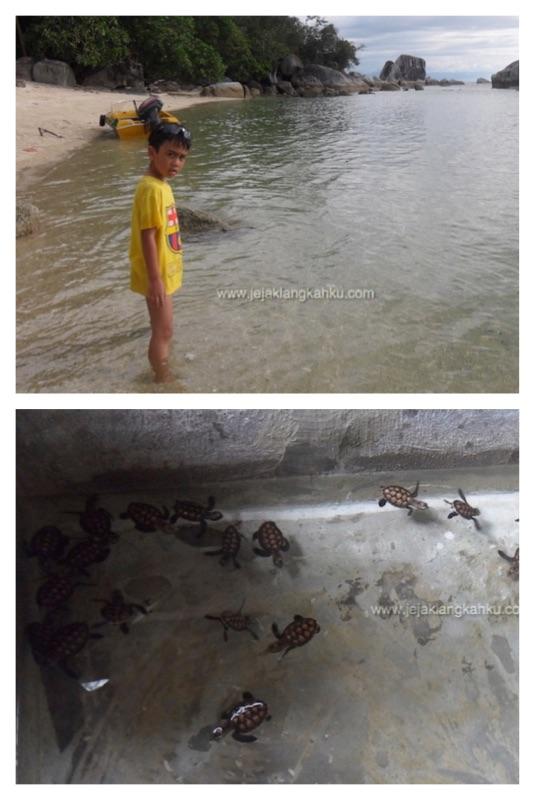 pulau kepayang belitung d