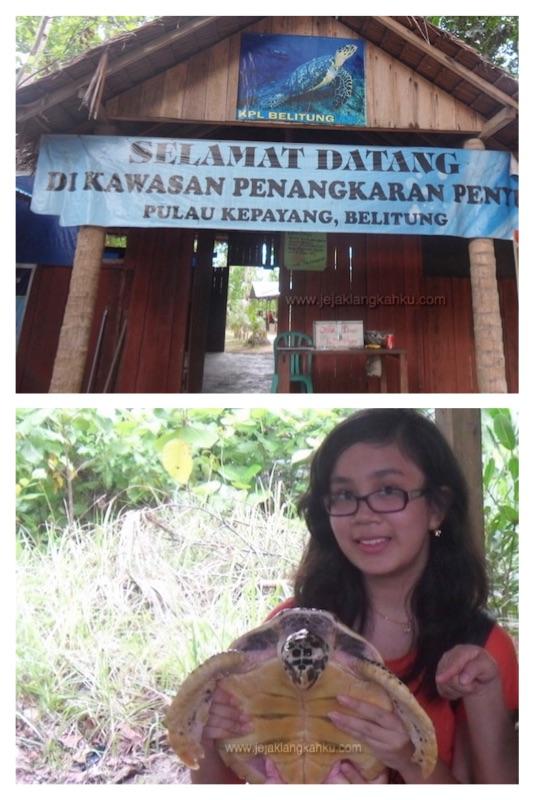 pulau kepayang belitung e