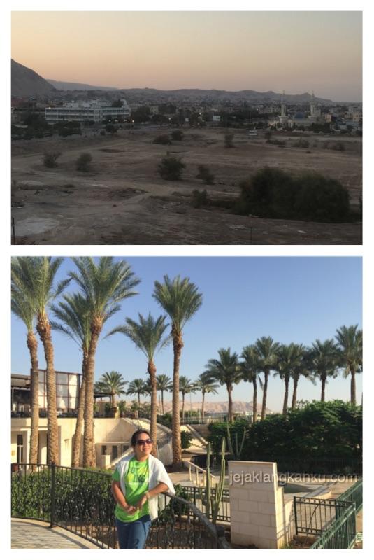 oasis hotel jericho 6