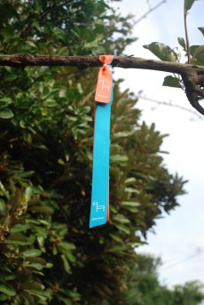 Jeju-Olle-Trail-Typical-View-Waymarking Ribbons