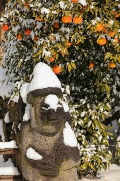 101 Jeju Tangerine and Dolharubang
