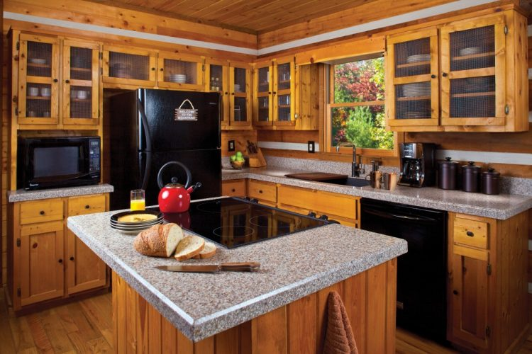 Minimalist and rustic design kitchens with black appliances