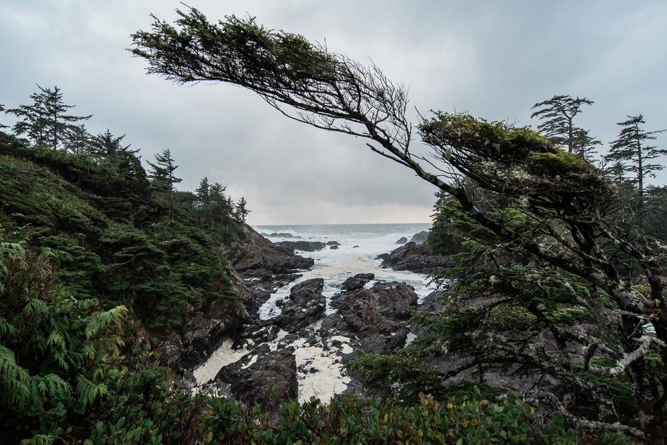 vancouver-island-west-coast