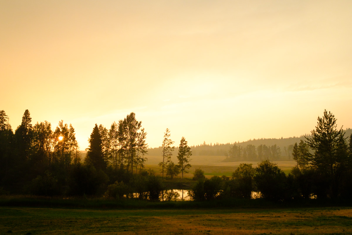 golden sunset in Horsefly at the Sunshine Ranch