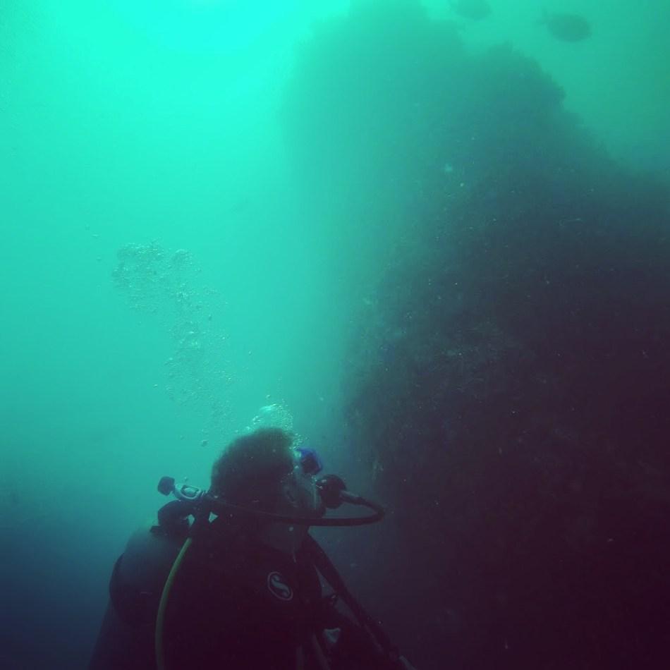 Jellis Vaes Diving in Koh Tao - Article: Think Like a Genius