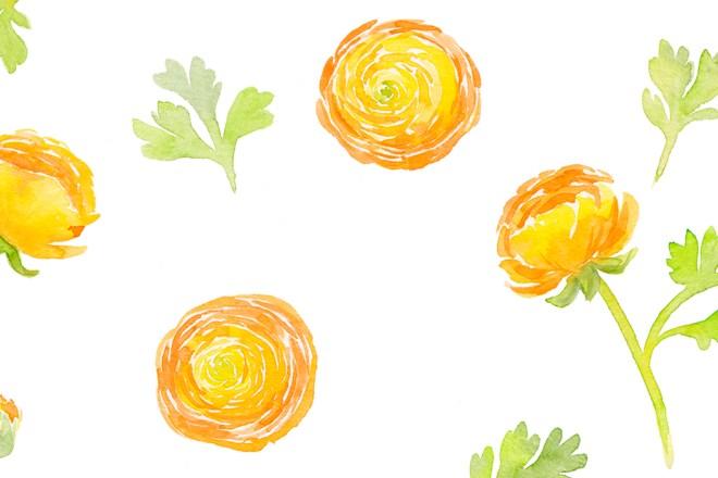 Floral Watercolor: Ranunkeln malen