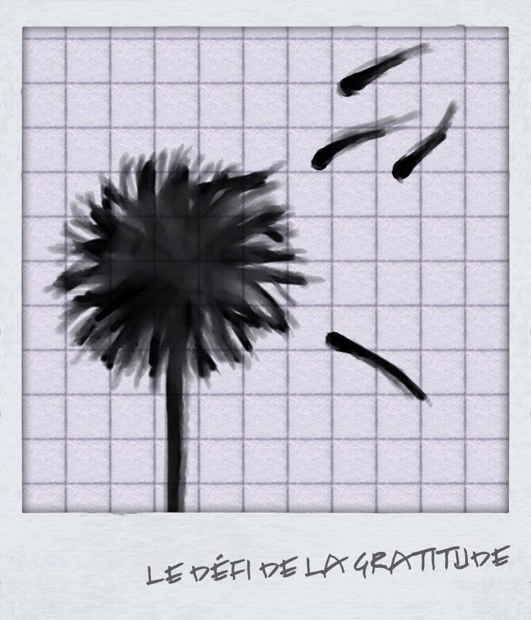 le défi de la gratitude citation reconnaissance