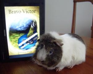 BV Victor 3