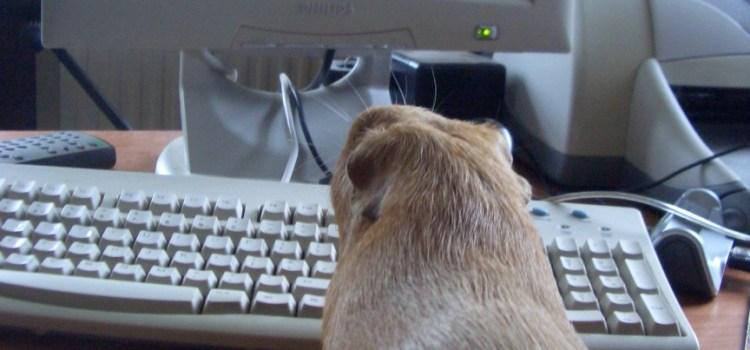 George at work