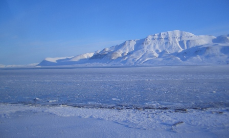 #FridayFlash Fiction | The Green Green Grass of Svalbard