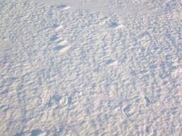 Ice closeup