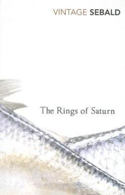 The Rings of Saturn