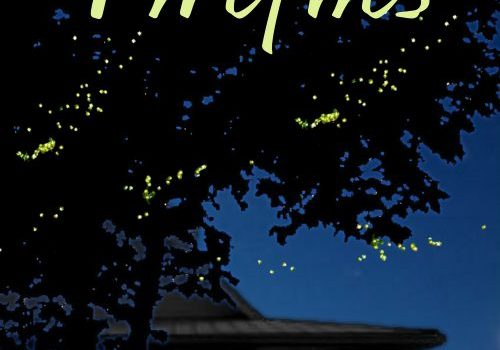 Book Review | Fireflies by Bree Wolf