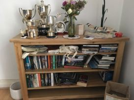 amreading bookshelf