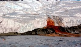 Taylor Glacier, Antarctica | This isn't blood! Just a mysterious natural reaction.