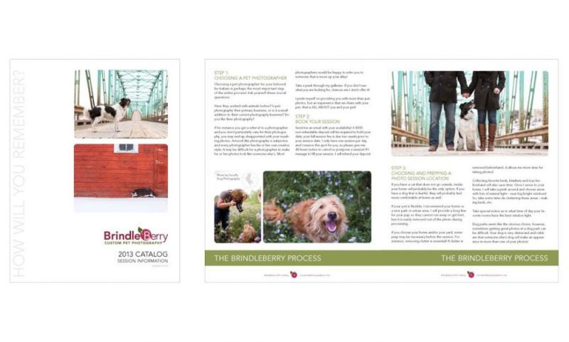 Photography Catalog, Cover and Inside Spread, for BrindleBerry Photography
