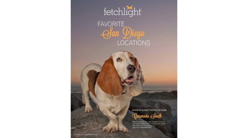 Ebook Opt-In Lead Magnet for Fetchlight, Cover
