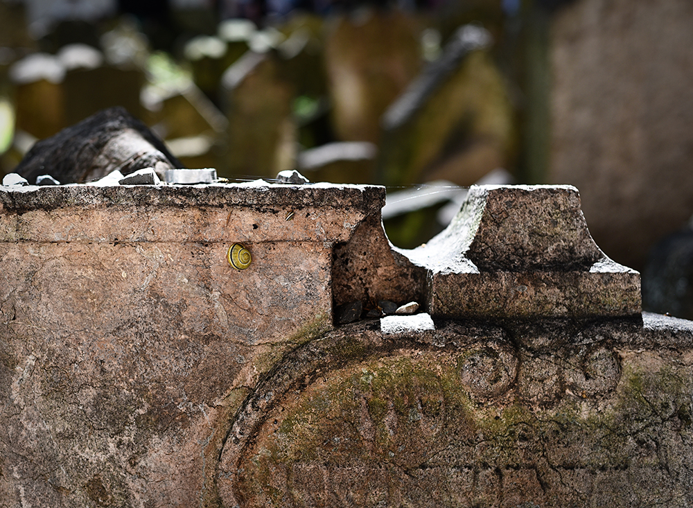Visiting the crypts and cemeteries of Prague, Brno, and Vienna