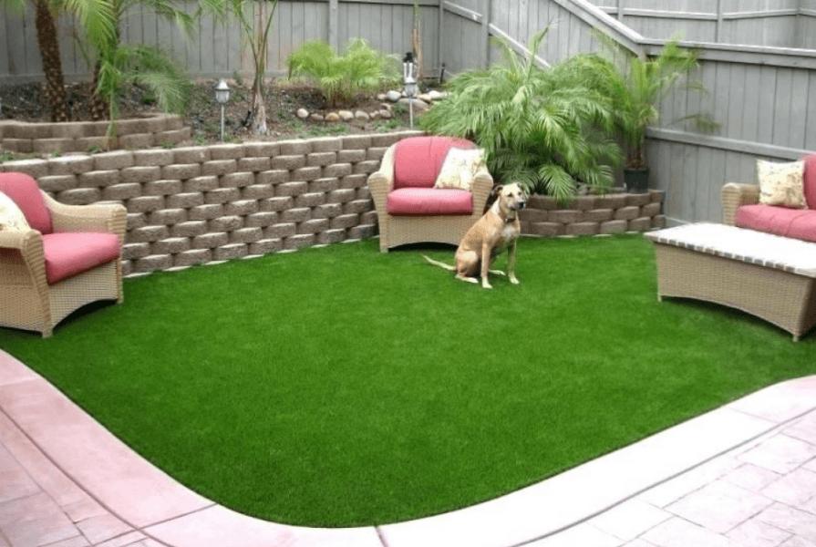 Как сделать газон у дома