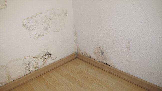 Kerusakan didalam apartemen