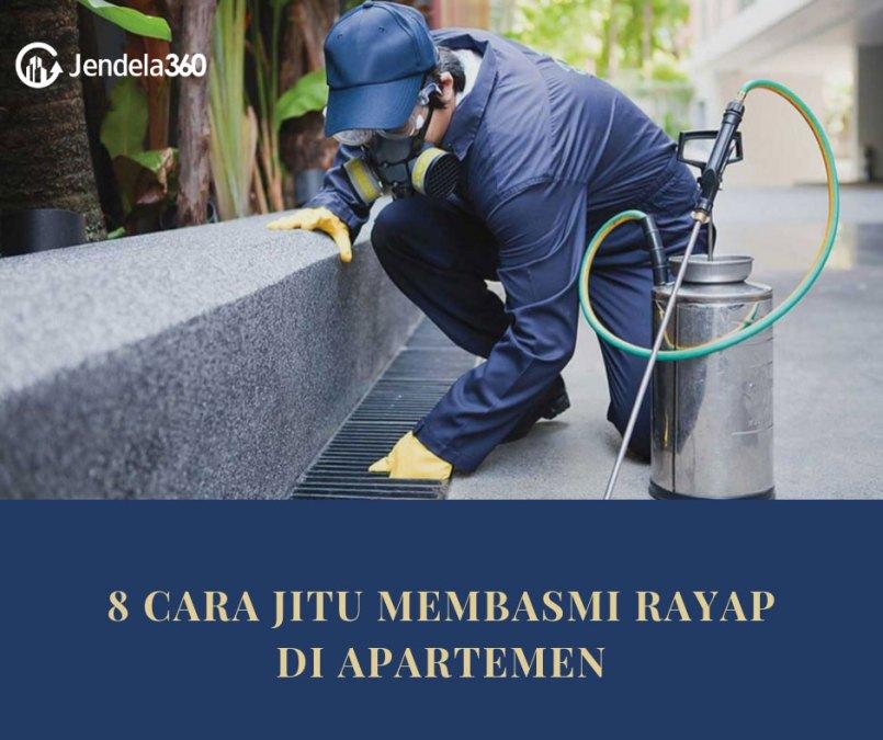 8 Cara Jitu Membasmi Rayap di Apartemen Secara Alami
