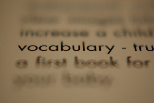 an image of the word vocabulary