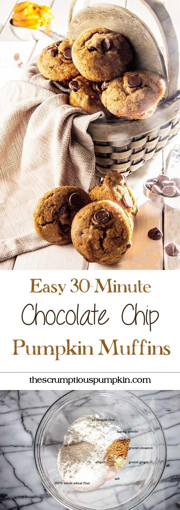 easy-30-minute-chocolate-chip-pumpkin-muffins