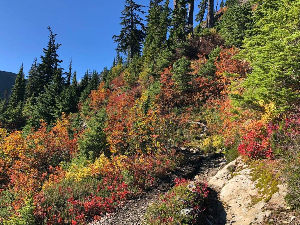 Chain Lakes Loop Fall Colors in North Cascades