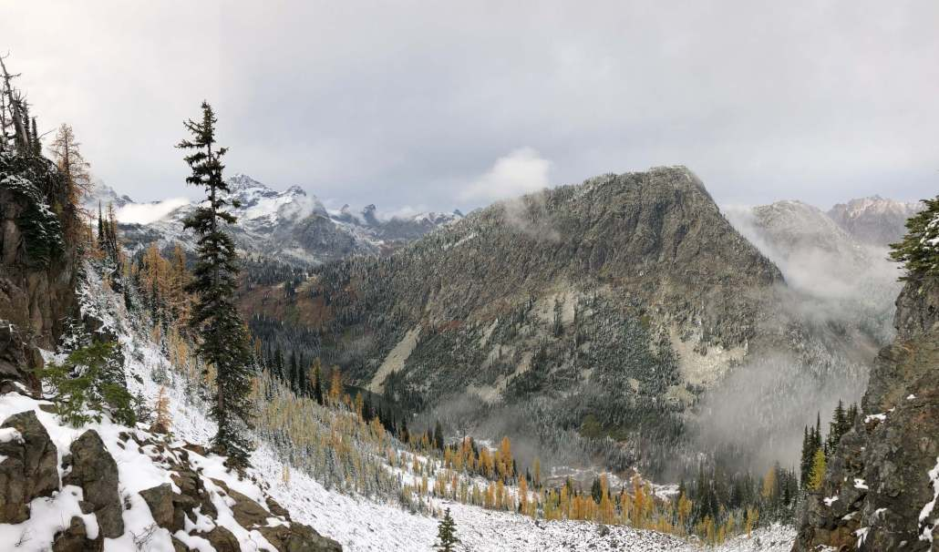 Larches on the Maple Loop Trail in the North Cascades National Park