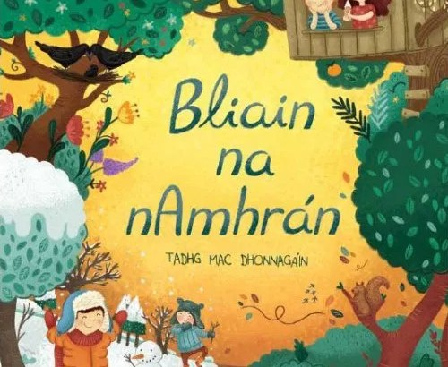 Bliain-Book-Cover