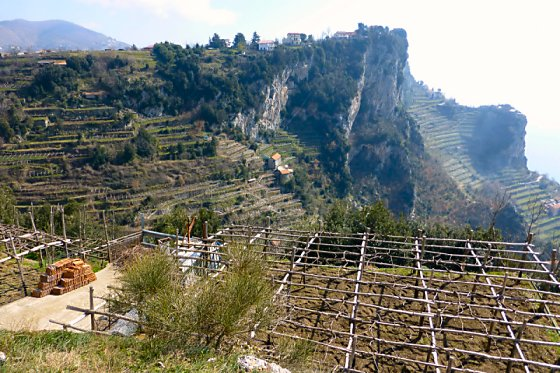 Terracing of the hillside along the Amalfi Coast