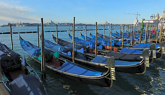 Gondolas parked in a row along the Grand Canal.