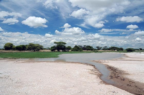 Water hole with surrounding grass and sand.