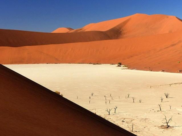 Dead Pan with Acacia Bones, Namib-Naukluft National Park