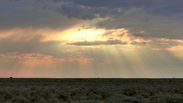 Showers over the Plain, Etosha National Park
