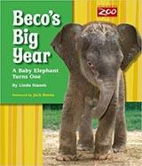 Beco's Big Year, by Linda Stanek